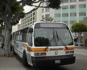 firma wynajmująca mikrobusy